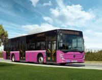CNG'li otobüs yatırımı