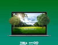 Brisa'dan 10 bin ağaçlık dijital orman